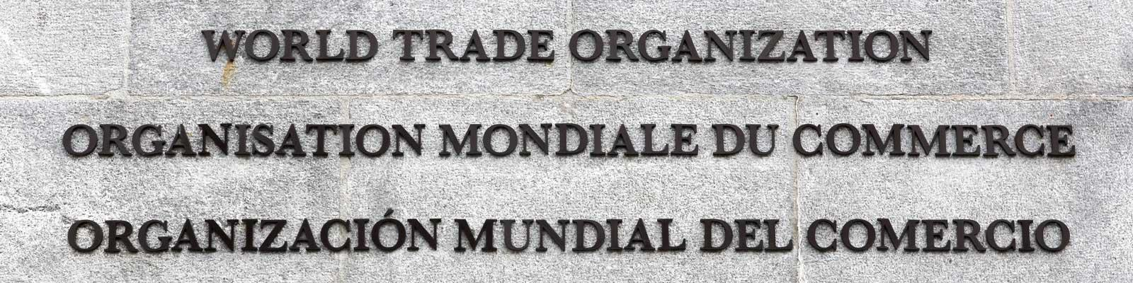"""WTO as a Reflection of Emerging """"New"""" World Order   EastWest Institute"""